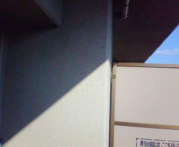 NEC_3324.JPG