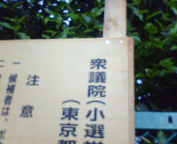 NEC_4750.JPG