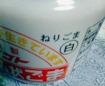 NEC_4861.JPG