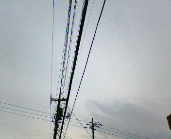 NEC_5522.JPG
