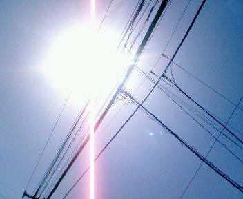 NEC_5530.JPG