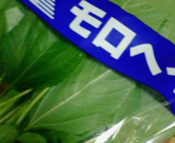 NEC_5655.JPG