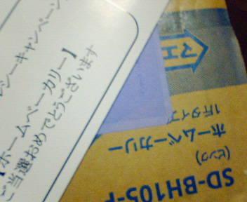 NEC_6406.JPG