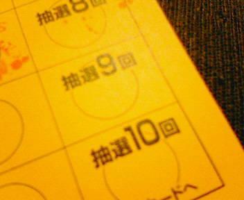 NEC_6737.JPG